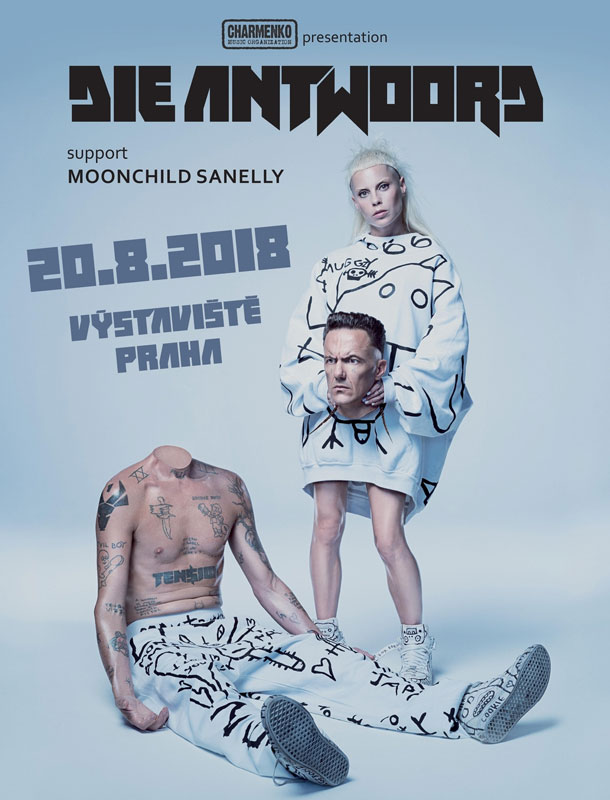picture DIE ANTWOORD