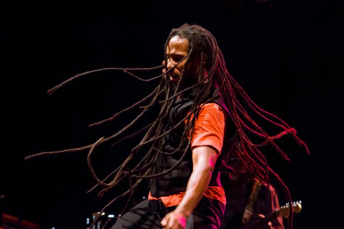 picture Ziggy Marley (Jamajka)