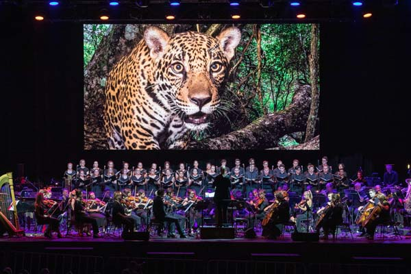 picture National Geographic Symphony For Our World