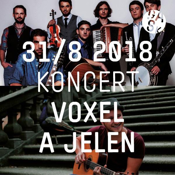 VOXEL + JELEN