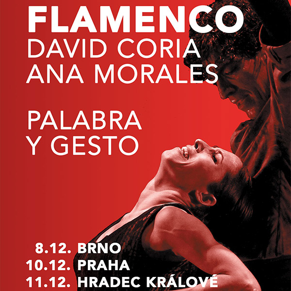 FLAMENCO / David Coria & Ana Morales