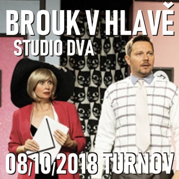 BROUK V HLAVĚ / Studio DVA