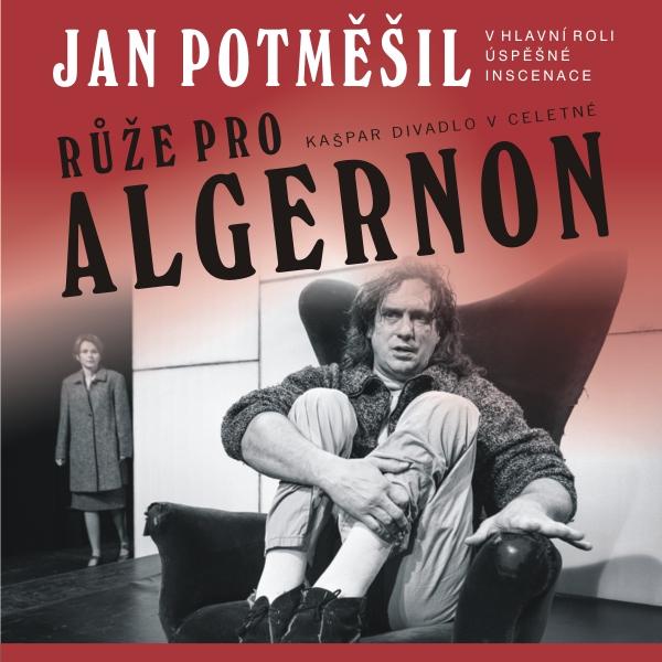 RŮŽE PRO ALGERNON, Benešov